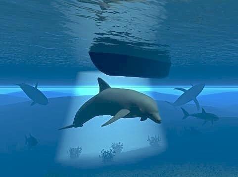 海底の風景.jpg